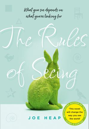 The Rules of Seeing Hardcover  by