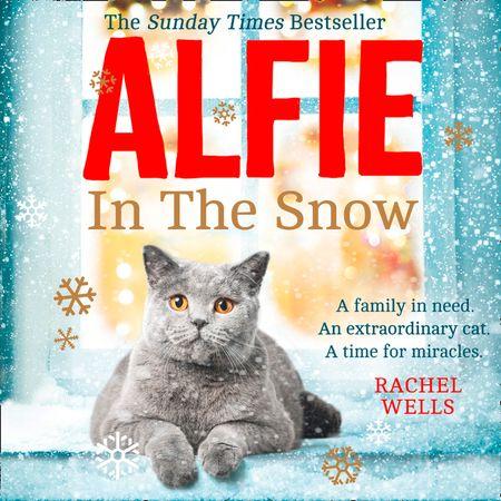Alfie in the Snow - Rachel Wells, Read by Edward Killingback