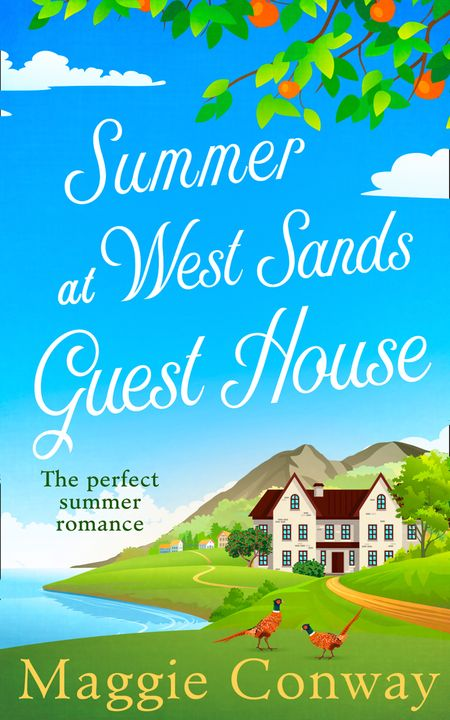 Summer at West Sands Guest House - Maggie Conway