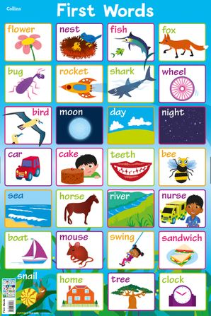 First Words (Collins Children's Poster)   by Steve Evans