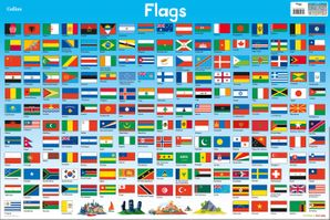 Flags Loose-leaf  by Steve Evans