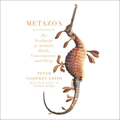 Metazoa: Animal Minds and the Birth of Consciousness - Peter Godfrey-Smith, Read by Peter Godfrey-Smith