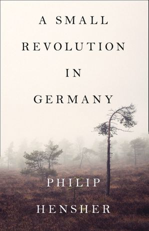 a-small-revolution-in-germany