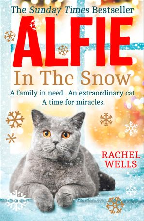 Alfie in the Snow Paperback  by Rachel Wells