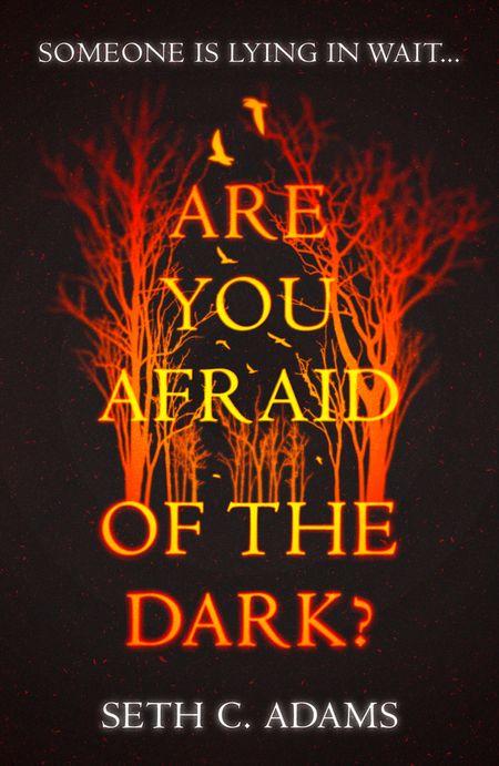 Are You Afraid of the Dark? - Seth C. Adams