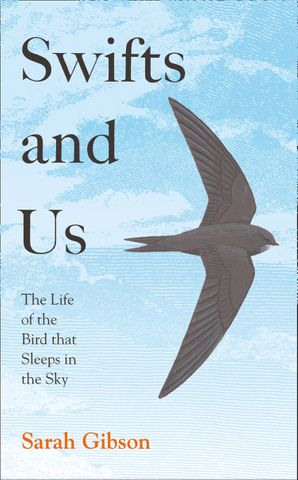 Swifts and Us: The Life of the Bird that Sleeps in the Sky Hardcover  by Sarah Gibson