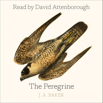 The Peregrine - J. A. Baker, Introduction by Mark Cocker, Afterword by Robert Macfarlane, Read by David Attenborough and Dugald Bruce-Lockhart