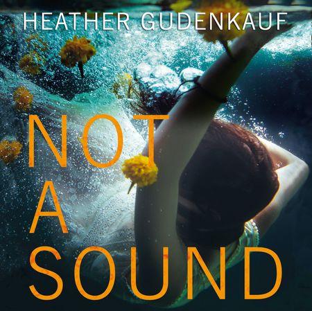 Not A Sound - Heather Gudenkauf, Read by Julia Whelan