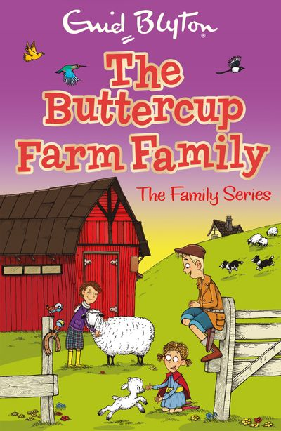 The Buttercup Farm Family - Enid Blyton, Illustrated by Aleksei Bitskoff