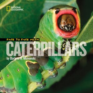 Face to Face with Catepillars (Face to Face ) Hardcover  by Darlyne A. Murawski