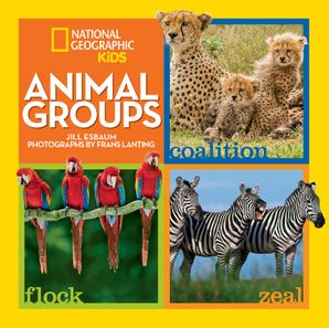 Animal Groups (Animals) Hardcover  by Jill Esbaum
