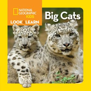 Look and Learn: Big Cats (Look&Learn)   by No Author
