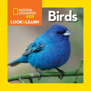 Look and Learn: Birds (Look&Learn)   by No Author