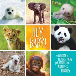 Hey, Baby! (Stories & Poems) Hardcover  by Stephanie Warren Drimmer