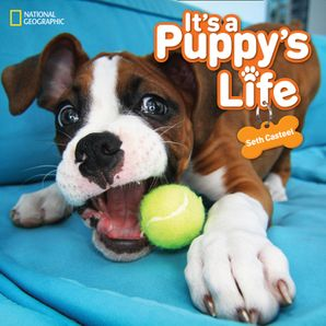 It's a Puppy's Life (Animals) Hardcover  by Seth Casteel