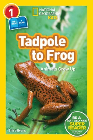 National Geographic Kids Readers: Tadpole to Frog (L1/Co-reader) (Readers) Paperback  by Shira Evans