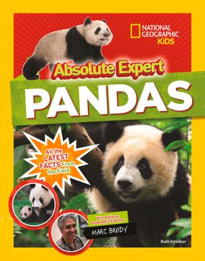 absolute-expert-pandas-animals