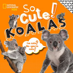 so-cute-koalas