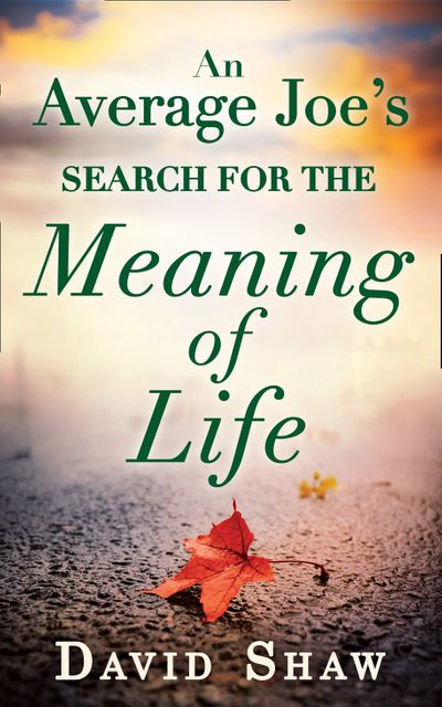 An Average Joe's Search For The Meaning Of Life - David Shaw