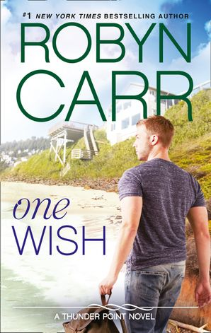 one-wish-thunder-point-book-7