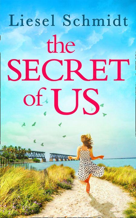 The Secret Of Us - Liesel Schmidt