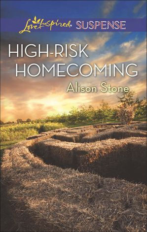 High-Risk Homecoming eBook First edition by Alison Stone