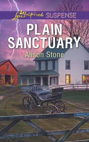 Plain Sanctuary eBook  by