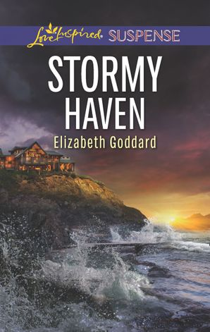 Stormy Haven (Mills & Boon Love Inspired Suspense) (Coldwater Bay Intrigue, Book 2) eBook  by Elizabeth Goddard