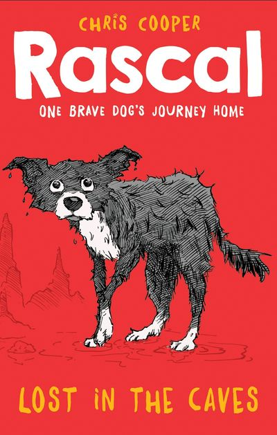 Rascal: Lost in the Caves (Rascal) - Chris Cooper, Illustrated by James de la Rue