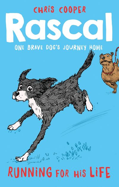 Rascal: Running For His Life (Rascal) - Chris Cooper, Illustrated by James de la Rue