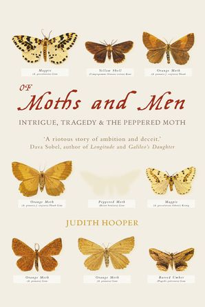 Of Moths and Men Paperback  by Judith Hooper