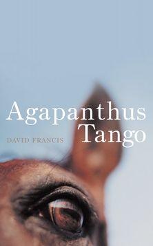 Agapanthus Tango