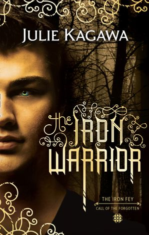 The Iron Warrior Paperback First edition by Julie Kagawa