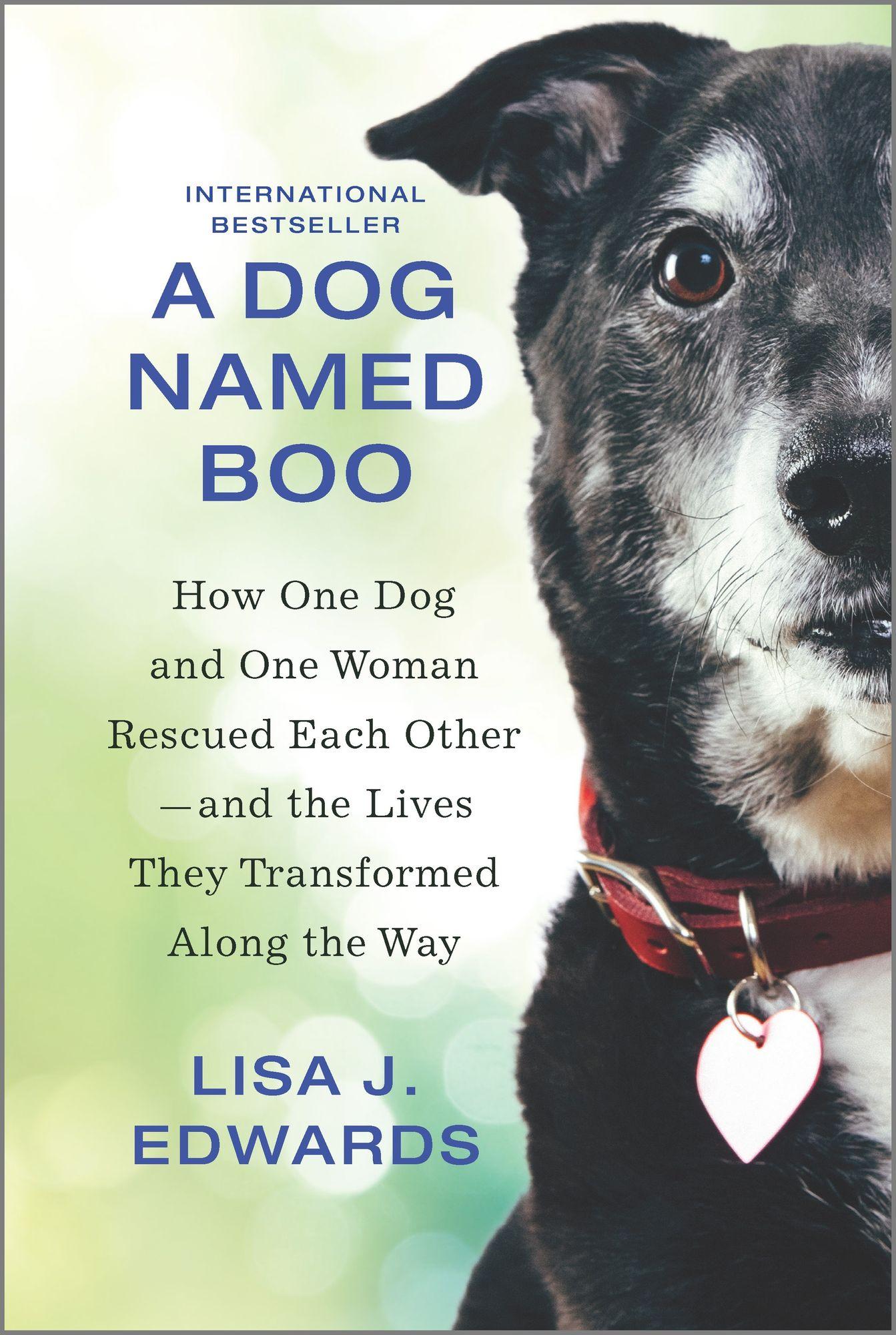 A Dog Named Book by Lisa J. Edwards
