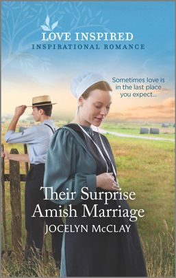 Their Surprise Amish Marriage