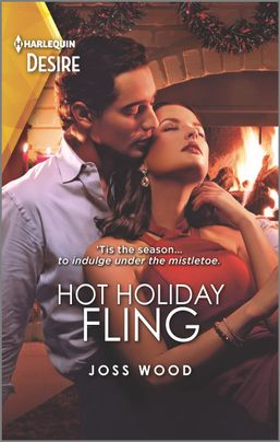 Hot Holiday Fling