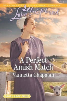 A Perfect Amish Match