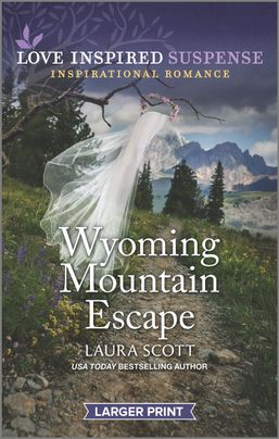 Wyoming Mountain Escape