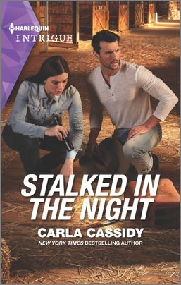 Stalked in the Night