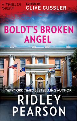 Boldt's Broken Angel